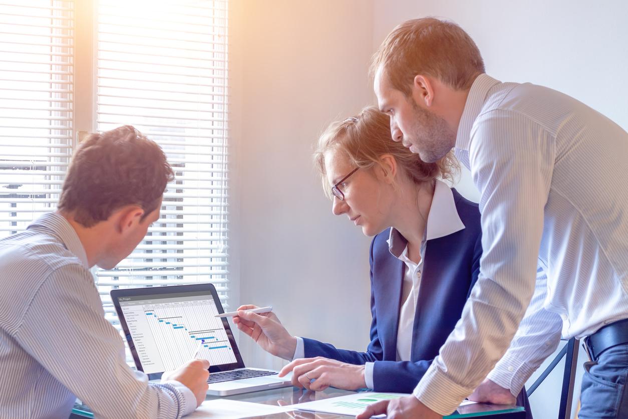 Online Business Project Management